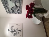 Swiss Chinese Artist David MA, DAVID MA ART - EXHIBITION, CASA DEL ARTE, 18.-23.11.14, Vernissage
